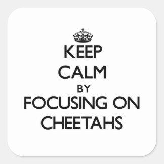 Guarde la calma centrándose en guepardos pegatina cuadrada