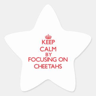 Guarde la calma centrándose en guepardos pegatina en forma de estrella