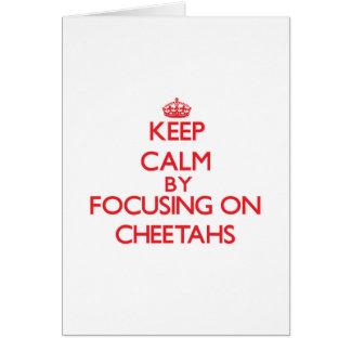 Guarde la calma centrándose en guepardos tarjeta de felicitación