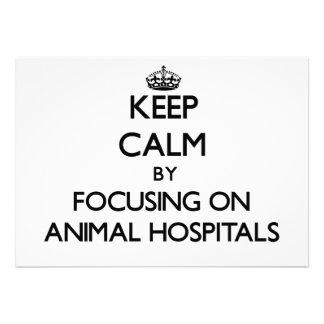 Guarde la calma centrándose en hospitales veterina