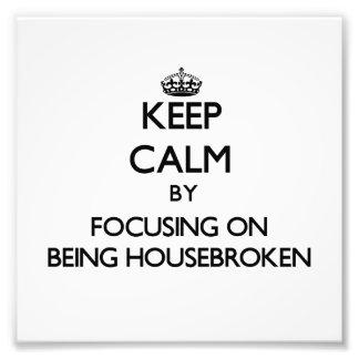Guarde la calma centrándose en Housebroken