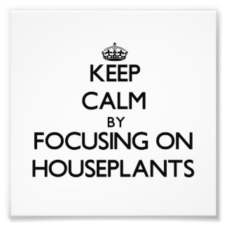 Guarde la calma centrándose en Houseplants Impresión Fotográfica