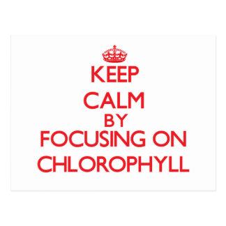 Guarde la calma centrándose en la clorofila postal