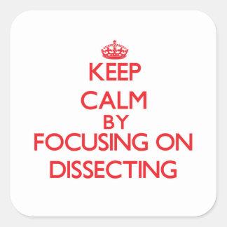 Guarde la calma centrándose en la disección calcomanía cuadradase