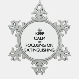 Guarde la calma centrándose en la EXTINCIÓN Adornos