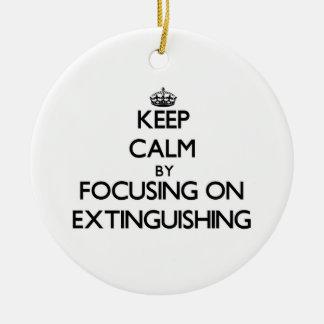 Guarde la calma centrándose en la EXTINCIÓN Ornamentos De Navidad