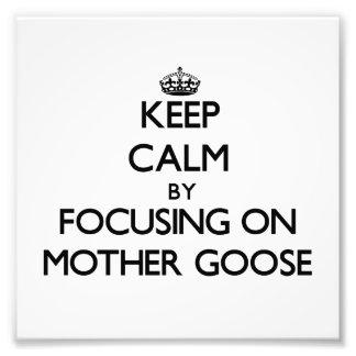 Guarde la calma centrándose en la mamá ganso