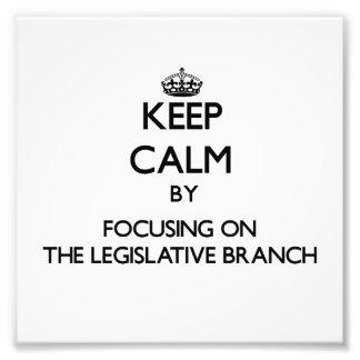 Guarde la calma centrándose en la rama legislativa