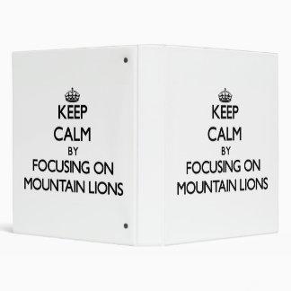 Guarde la calma centrándose en leones de montaña