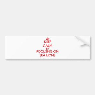 Guarde la calma centrándose en leones marinos etiqueta de parachoque