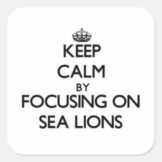 Guarde la calma centrándose en leones marinos pegatina cuadrada