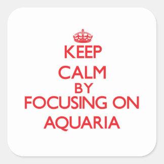 Guarde la calma centrándose en los acuarios colcomanias cuadradases