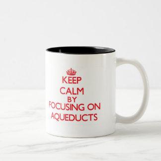 Guarde la calma centrándose en los acueductos taza de café