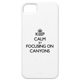 Guarde la calma centrándose en los barrancos iPhone 5 protectores