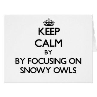 Guarde la calma centrándose en los búhos Nevado
