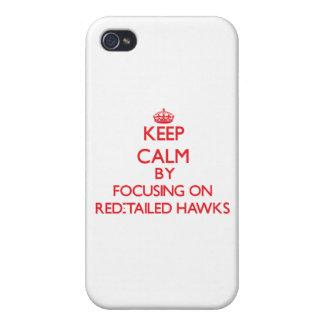 Guarde la calma centrándose en los halcones Rojo-A iPhone 4/4S Fundas