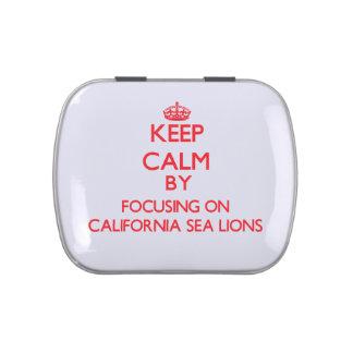 Guarde la calma centrándose en los leones marinos  jarrones de caramelos