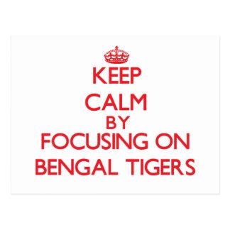 Guarde la calma centrándose en los tigres de Benga Tarjetas Postales