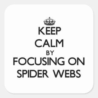 Guarde la calma centrándose en los Web de araña Colcomanias Cuadradases