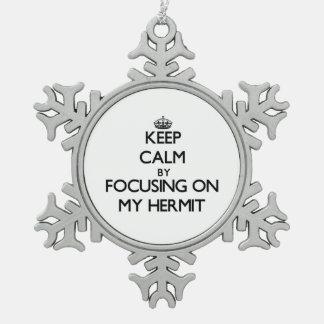 Guarde la calma centrándose en mi ermitaño