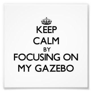 Guarde la calma centrándose en mi Gazebo Cojinete
