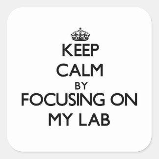 Guarde la calma centrándose en mi laboratorio colcomanias cuadradases