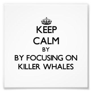 Guarde la calma centrándose en orcas impresión fotográfica