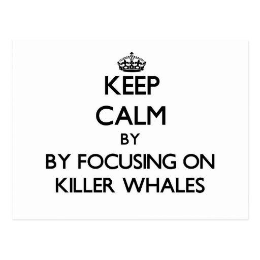 Guarde la calma centrándose en orcas tarjetas postales