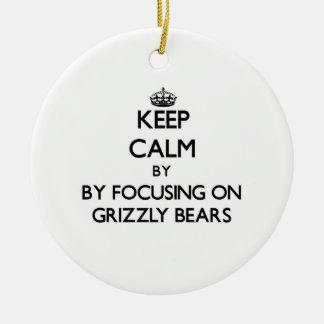 Guarde la calma centrándose en osos grizzly adorno para reyes