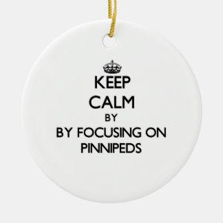 Guarde la calma centrándose en Pinnipeds Ornamento De Navidad