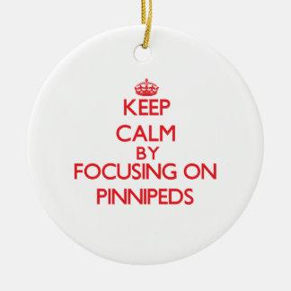 Guarde la calma centrándose en Pinnipeds Adornos De Navidad