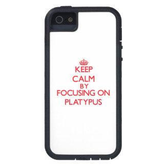Guarde la calma centrándose en Platypus iPhone 5 Protectores