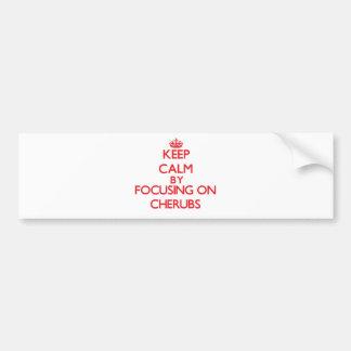 Guarde la calma centrándose en querubes etiqueta de parachoque