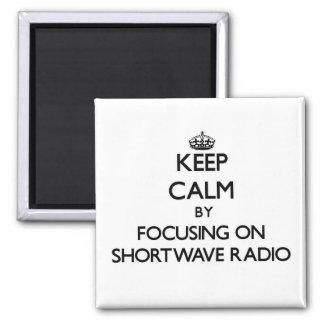 Guarde la calma centrándose en radio de la onda co imán de frigorífico