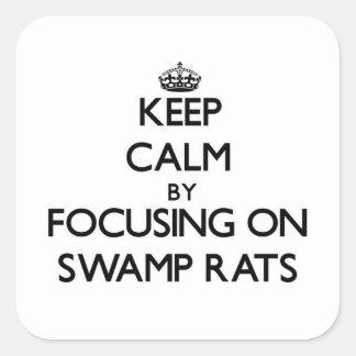 Guarde la calma centrándose en ratas del pantano