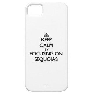 Guarde la calma centrándose en secoyas iPhone 5 funda