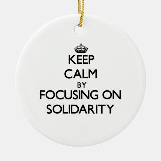 Guarde la calma centrándose en solidaridad ornamente de reyes