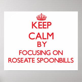 Guarde la calma centrándose en Spoonbills rosados Poster