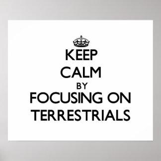 Guarde la calma centrándose en Terrestrials