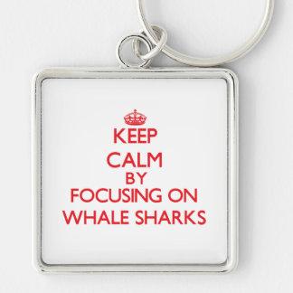 Guarde la calma centrándose en tiburones de ballen llavero
