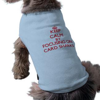 Guarde la calma centrándose en tiburones de camiseta de perro