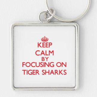 Guarde la calma centrándose en tiburones de tigre llavero