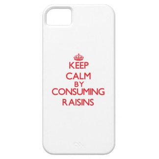 Guarde la calma consumiendo las pasas iPhone 5 funda