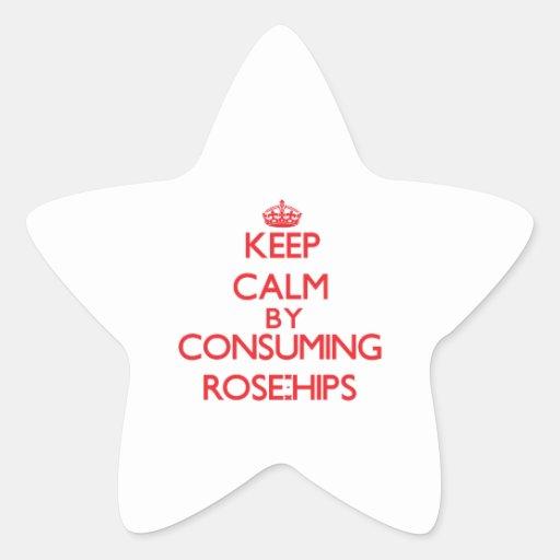 Guarde la calma consumiendo los escaramujos colcomanias forma de estrellaes personalizadas