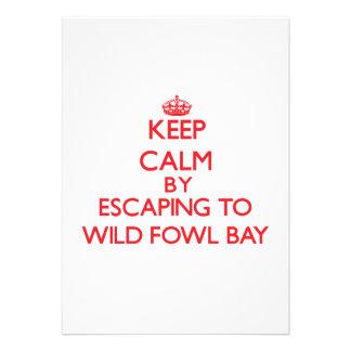 Guarde la calma escapándose a la bahía salvaje Mic