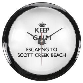 Guarde la calma escapándose a la playa Califor de  Reloj Acuario