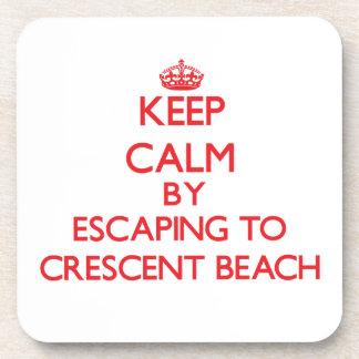 Guarde la calma escapándose a la playa creciente C Posavaso