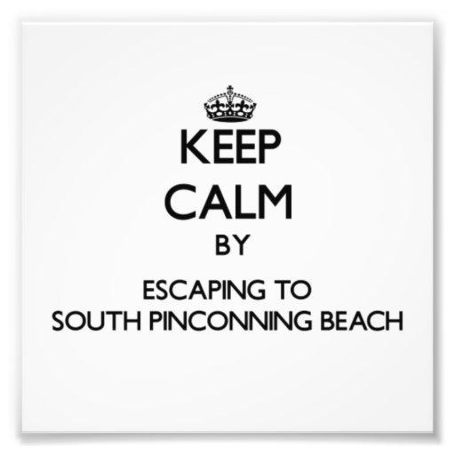 Guarde la calma escapándose a la playa del sur MI  Fotografia