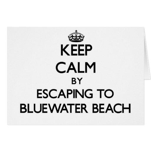 Guarde la calma escapándose a la playa la Florida  Tarjetas