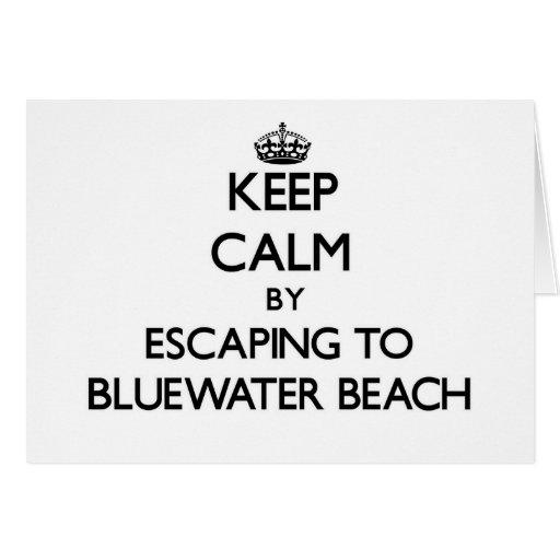 Guarde la calma escapándose a la playa la Florida  Felicitaciones
